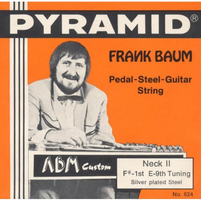 Pyramid E-9th Pedal Steel Set