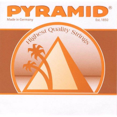 Pyramid 10 String Classical Guitar Set